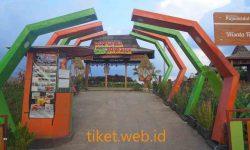Tiket Masuk Cafe Sawah Pujon Kidul Malang 2020